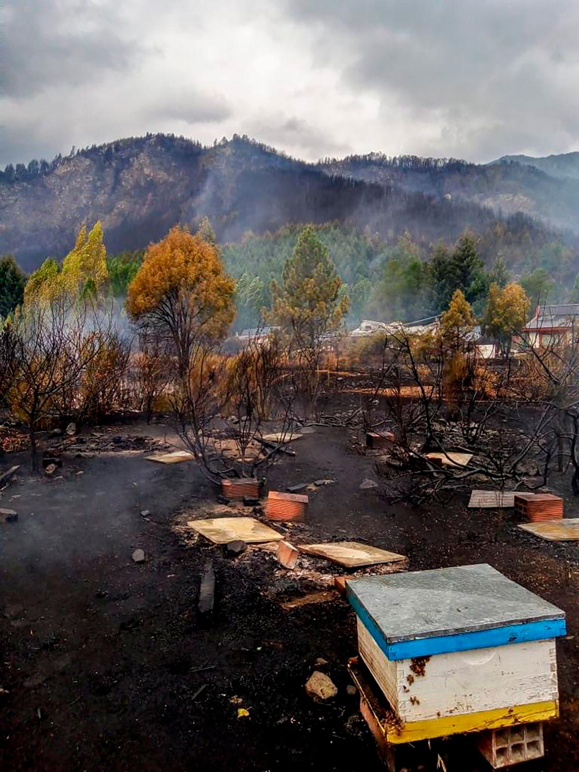 incendios-apicultura
