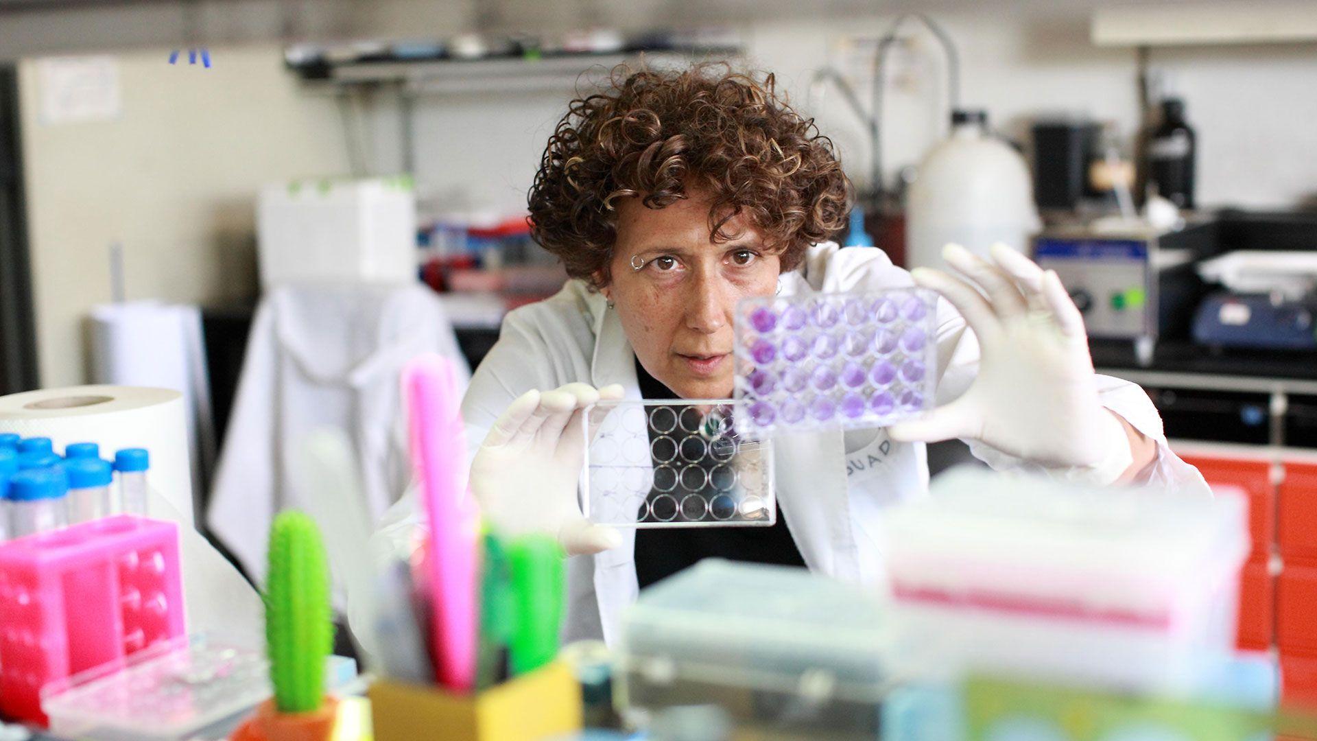 """Andrea Gamarnik, de la Fundación Instituto Leloir, es una de las científicas que investigó qué pasa con la vacuna Sputnik V en Argentina. Los resultados """"muestran que la respuesta humoral de memoria de personas previamente expuestas al virus es robusta y parecería ser superior a la desarrollada después de dos dosis en personas que no se enfrentaron con el virus previamente"""", afirmó Gamarnik. /Mauro Roll"""