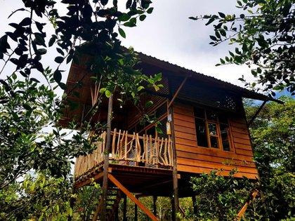 Las cabañas de Kofán fueron especialmente diseñadas para representar cómo vive la comunidad indígena y campesina en las riveras de los ríos del Putumayo. Foto: Cortesía del CentroEcoturístico Kofán.