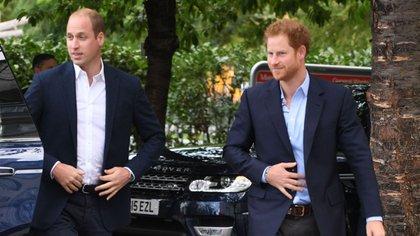 La difícil y lejana relación entre el príncipe Harry y su hermano mayor William (Foto: Archivo)