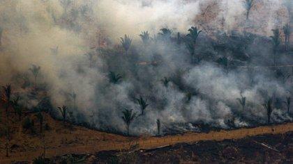 Vista aérea de los incendios en Boca do Acre, estado Amazonas (AFP)