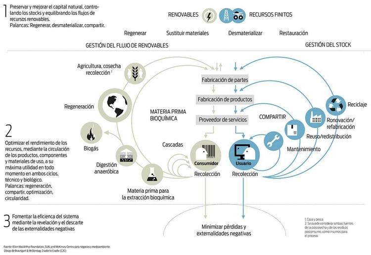 La economía circular se basa en tres principios: eliminar residuos y polución, mantener productos y materiales en uso y regenerar sistemas naturales (ONU)
