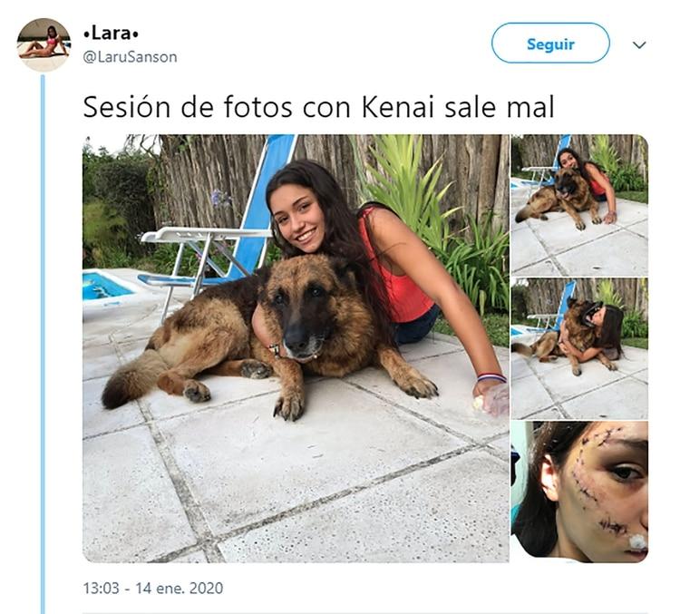 Resultado de imagen para sesión de fotos con una perra que terminó mal