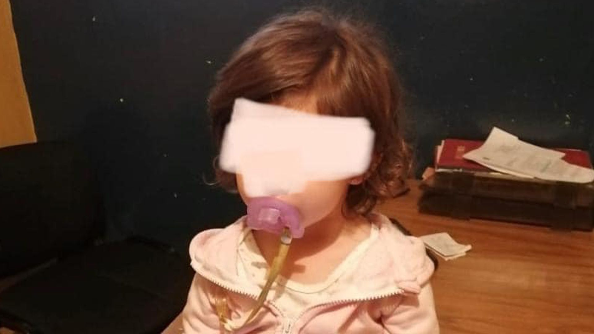 Localizan a niña de familia desaparecida en Jalisco (Foto: Facebook)