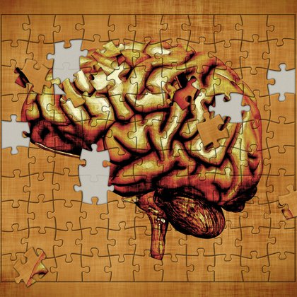 Todavía quedan muchas piezas para agregar en el rompecabezas del cerebro