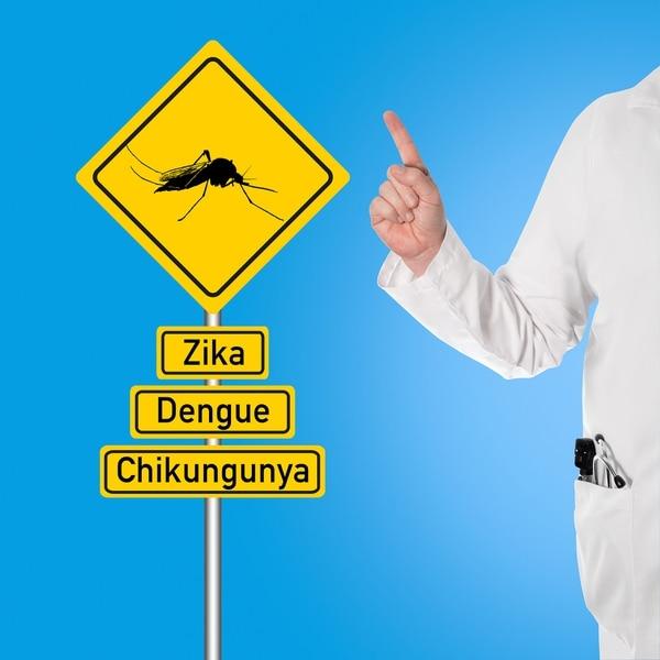 Las tres enfermedades son transmitidas por el Aedes aegypti