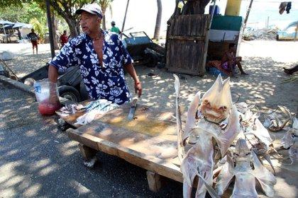 Venta de pez diablo para consumo humano en Veracruz Foto: (Cuartoscuro)