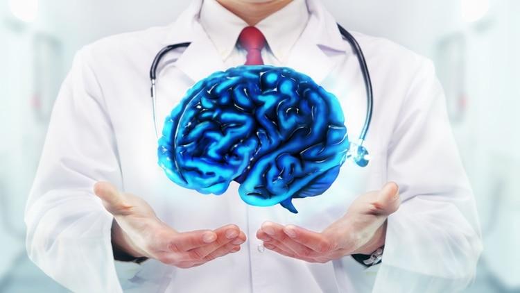 Los desafíos de las neurociencias para 2016