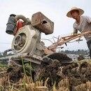 Los campesinos enfrentan condiciones extremas en China (AFP)