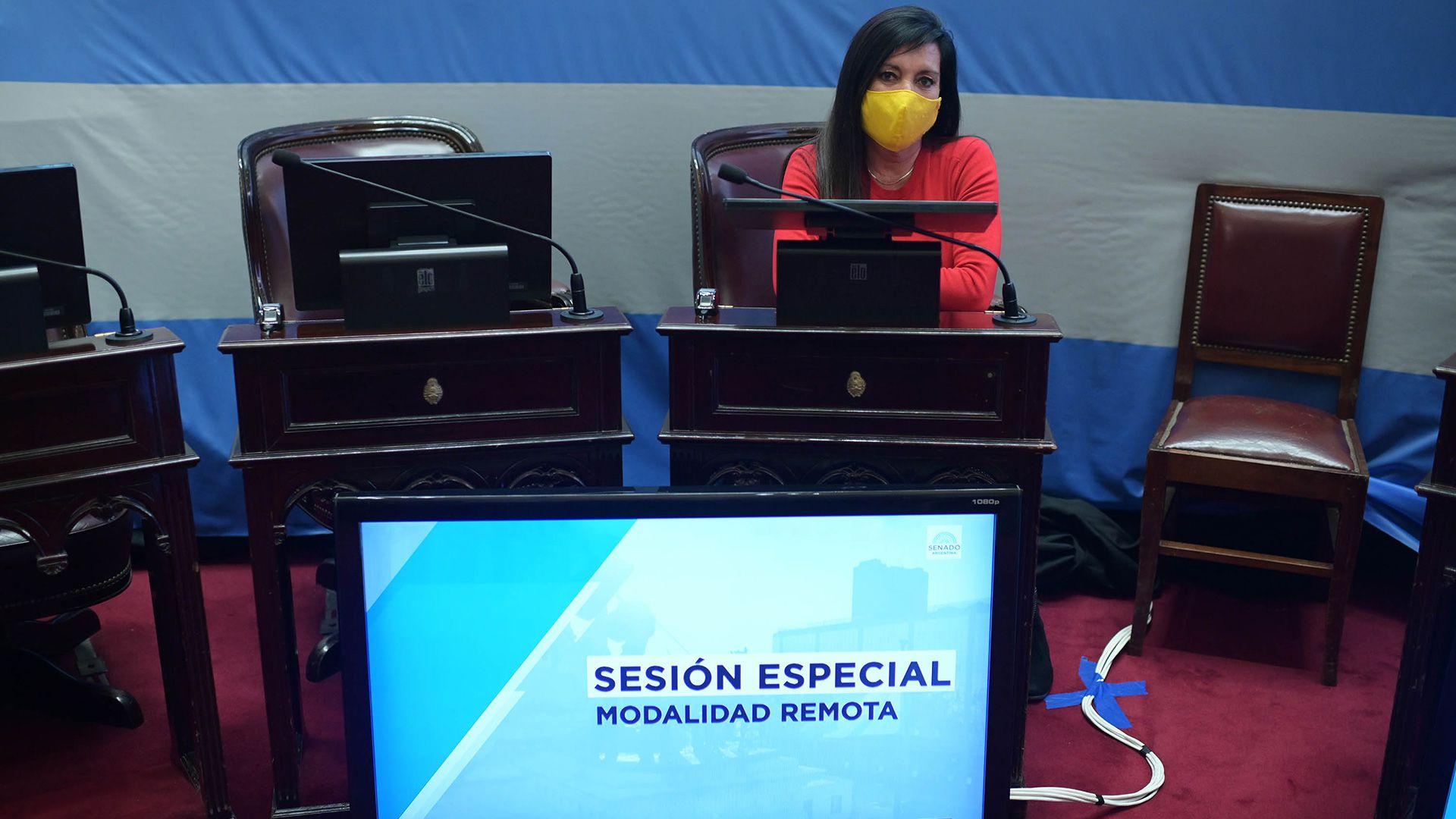 senado ley del Poder Ejecutivo sesion remota 24 6