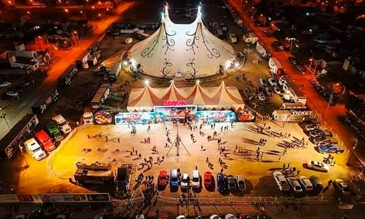 La situación crítica de un circo varado en cuarentena: son 80 ...
