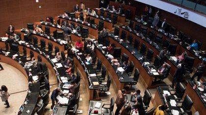 En cuanto el Pleno del Senado apruebe el dictamen, éste pasará directamente a AMLO, para su firma, publicación y entrada en vigor (Foto: Cuartoscuro)