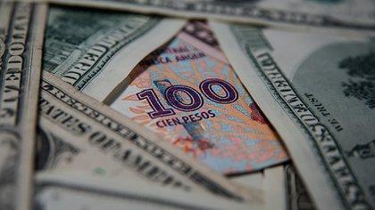 Con 100 pesos argentinos hoy se adquieren 2,51 dólares. (Adrián Escandar)