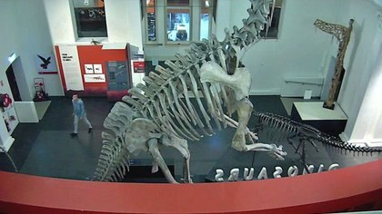 Imagen de circuito cerrado de televisión de un hombre caminando en el Museo Australiano, Sídney, Australia, 10 mayo 2020. Cortesía de la policía de Nueva Gales del Sur/Entregada vía REUTERS