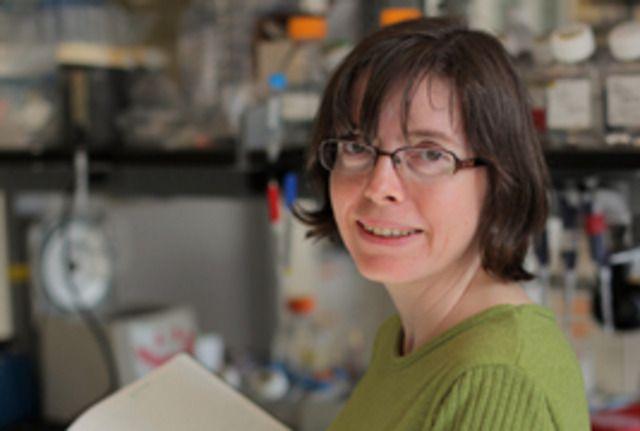La bioquímica Fiona Doersch con su equipo de investigadores en la Universidad de Basilea, Suiza, lideró el hallazgo de células dormidas en un modelo de ratón con modificaciones genéticas
