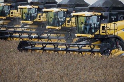 En el Gobierno estiman que aún podrían liquidarse este año exportaciones del agro por unos USD 7.000 millones