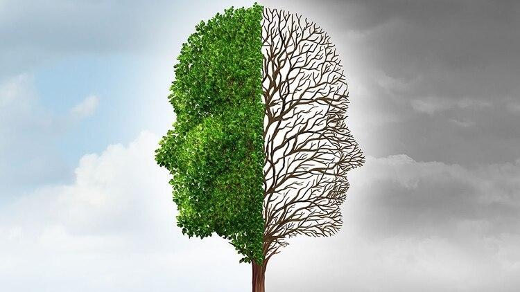 Trastorno Bipolar Por Qué Las Mujeres Son Las Más Afectadas