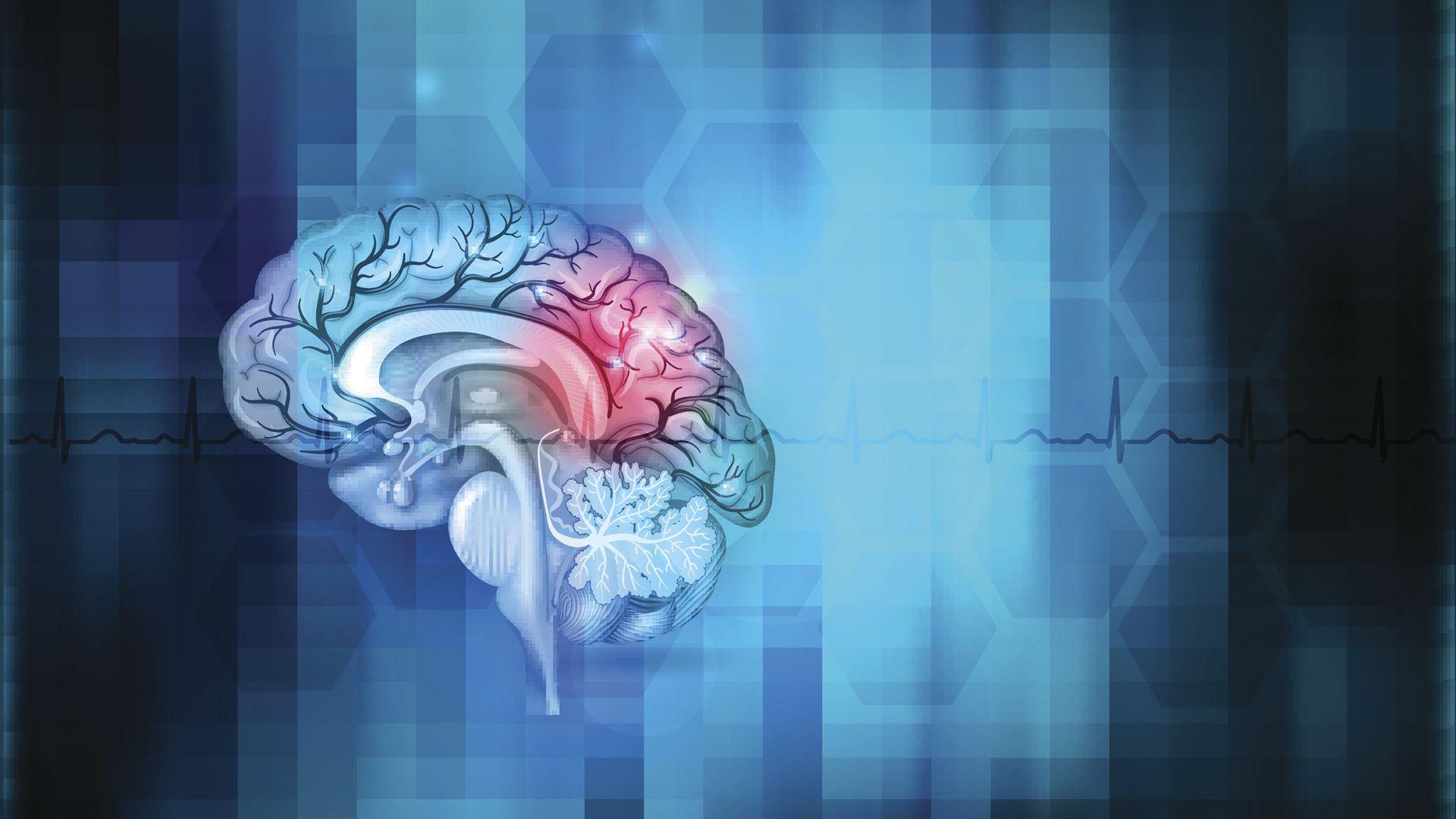 Dibujo abstracto del cerebro humano (Getty/iStock)
