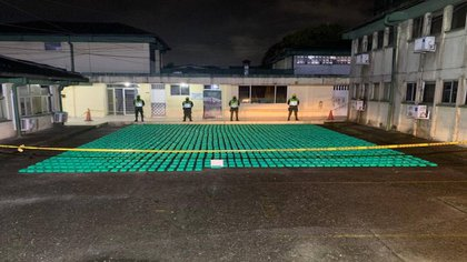 Seizure of cocaine camouflaged in avocados for export / (El País).