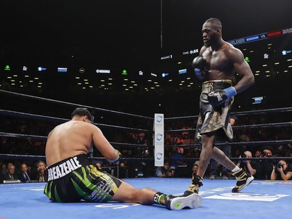 Deontay Wilder se impuso con un brutal nocaut (Foto: AP)