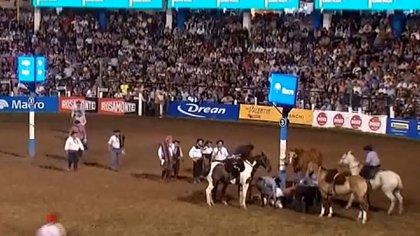 Crueldad animal. Sacrificaron un caballo en el Festival de Jesús María.