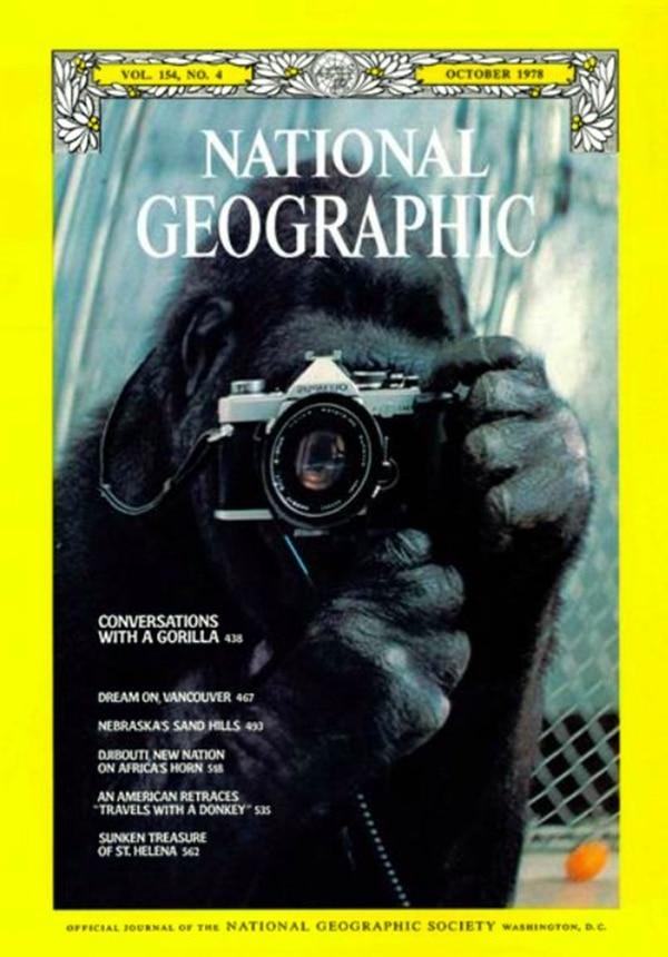 La portada de National Geographic con Koko