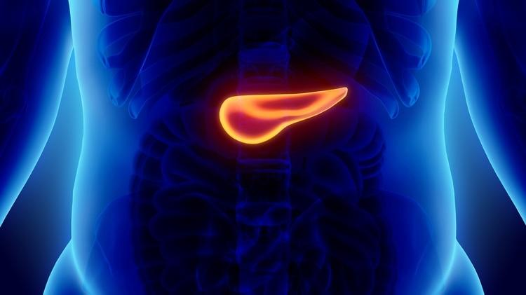Los investigadores tienen la esperanza de desarrollar nuevos medicamentos (Foto: iStock)
