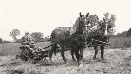 Henry Ford se crió en una granja y su vida estuvo siempre ligada al campo.