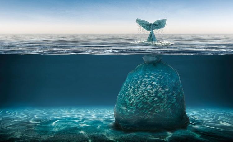 Concepción artística de un problema que crece: los plásticos en los océanos (ONG Plasticforchange)