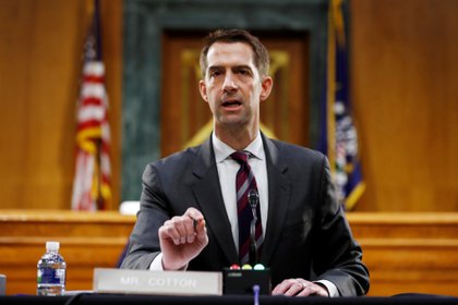 Tom Cotton, senador republicano