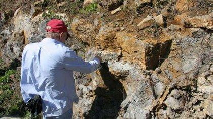 Lewis D. Ashwal estudió en profundidad las rocas de Mauricio (Wits University)