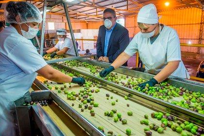 Según las autoridades locales, Catamarca ya flexibilizó el 90 por ciento de las actividades económicas.