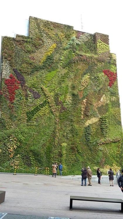 Jardín vertical en el CaixaForum, museo de Madrid