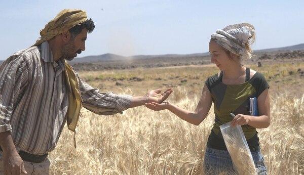 La investigadora Amaia Arranz-Otaegui y el asistente Ali Shakaiteer trabajan en una zona arqueológica del Desierto Negro, en Jordania (Reuters)