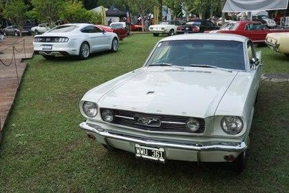 Un Ford Mustang de 1966, comprado en el mismo año por la familia que todavía lo tiene. Y completamente original. Nombre foto: 7 Ford Mustang GT 1966