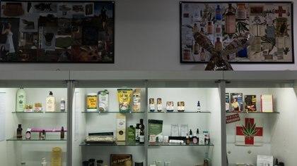 El Museo del Cannabis de Montevideo abrió en diciembre de 2016 (Adrián Escandar)
