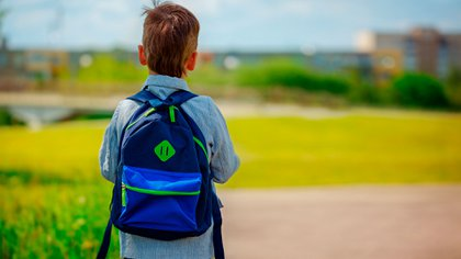 Little boy with a backpack go to school. Back view.