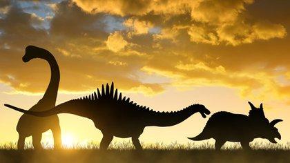 El Meteorito Que Extermino A Los Dinosaurios Tambien Aumento La Temperatura Terrestre Durante 100 000 Anos Infobae ¿fue un asteroide quién mató a los dinosaurios? temperatura terrestre durante
