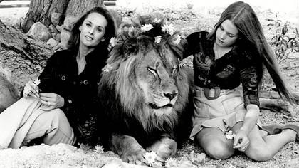Tippi Hedren y su hija Melanie Griffith con un león, uno de los 132 felinos que la actriz tenía como mascota/Shutterstock (5331373f)