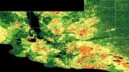 Los colores definen las zonas de nulo, bajo o alo riesgo de incendio (INTA)