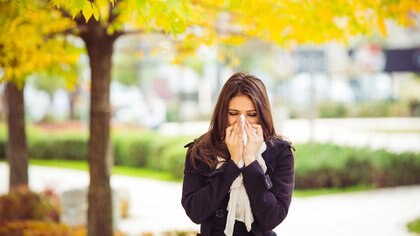 Las alergias son mecanismos de respuesta inmune exagerada del organismo (Getty Images)