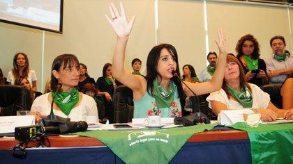 Victoria Donda, durante la presentación del proyecto para despenalizar el aborto (Fotos: M. Luna)
