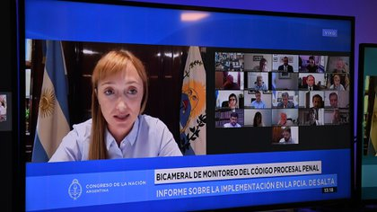 La semana pasada se reunió en forma remota la Comisión Bicameral de Monitoreo e Implementación del Código Procesal Penal Federal (Foto: Juan Carlos Cárdenas / Comunicación Senado)