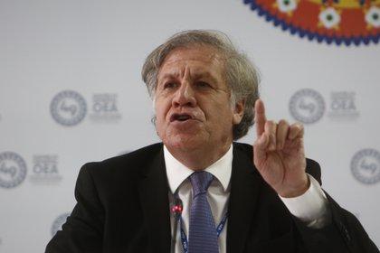En la imagen, el secretario general de la OEA, Luis Almagro. EFE/Luis Eduardo Noriega A/Archivo