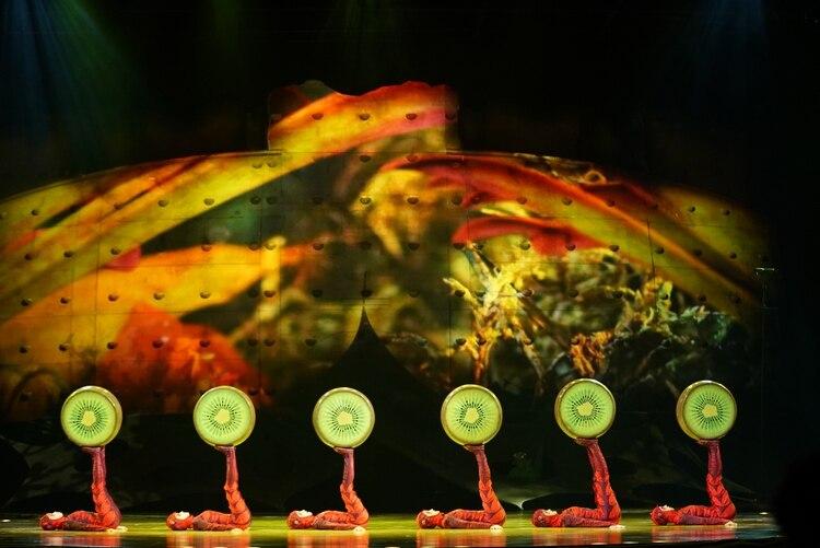 """""""Ovo"""" es un espectáculo clásico de Cirque du Soleil que se estrenó en 2009 con una gira bajo lona durante seis años. Para 2016 se adaptó para ser presentado en los estadios y arenas más importantes del mundo"""