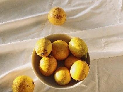 01/01/1970 ¿Por qué el limón es el cítrico de la temporada? Te lo descubrimos.  MADRID, 27 (CHANCE) Las propiedades del limón así como sus características culinarias hacen de esta fruta uno de los cítricos favoritos de los apasionados de los alimentos más naturales.  POLITICA EUROPA ESPAÑA CORTESÍA DE FLY ME TO THE MOON
