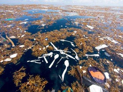 Un mar repleto de productos plásticos en Honduras (Caroline Power / Facebook)