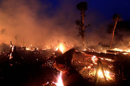 Rondonia fue uno de los estados más afectados en la amazonía brasileña