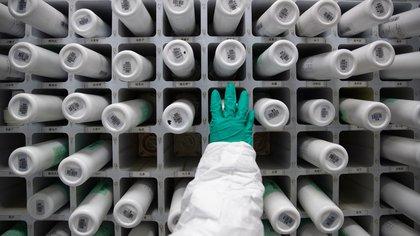 """La empresa estatal china Sinopharm obligó a sus empleados a someterse a las pruebas """"voluntarias"""" de vacunas contra el coronavirus (EFE)"""
