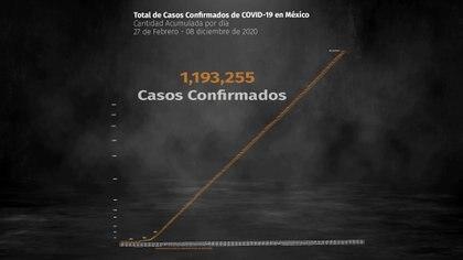 Hasta este martes 8 de diciembre se reportaron 1,193,255 casos positivos y 110,874 defunciones acumuladas por COVID-19 en México (Ilustración: Steve Allen)
